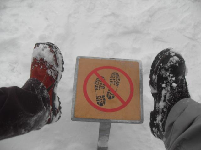 Schuhe im Schnee Island 290311